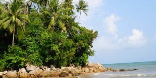 Пляж Панси