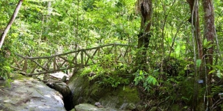 Khao Phra Thaeo National Park