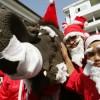 Как можно отметить Новый год на Пхукете?
