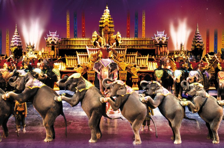 elephant fantasea