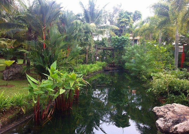 botanic garden main