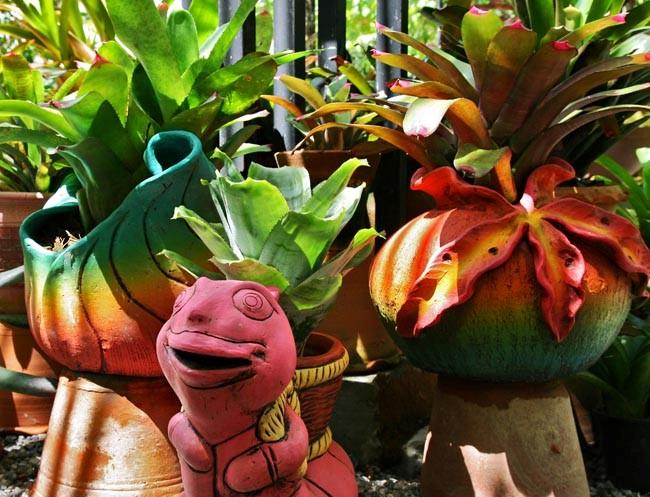 botanic garden4