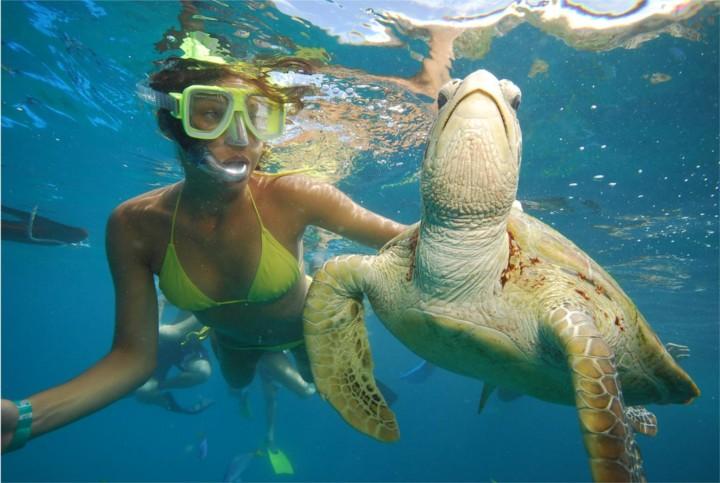 romantic diving on phuket