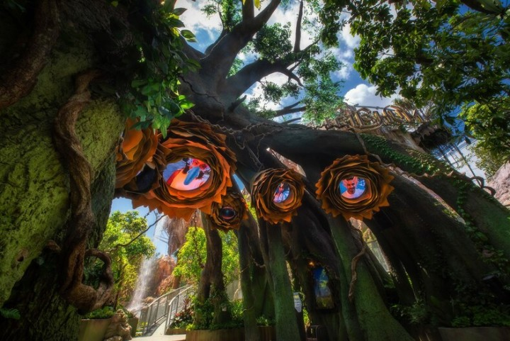 phuket park tribhum